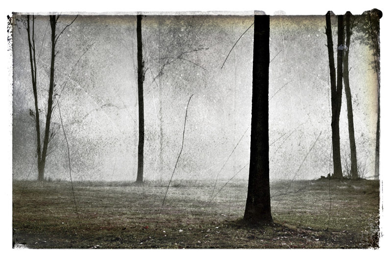 """Fog,"" a photograph by Mary Louise Good will be on display in the ""Development"" exhibition in the Widmann Gallery at King's College."