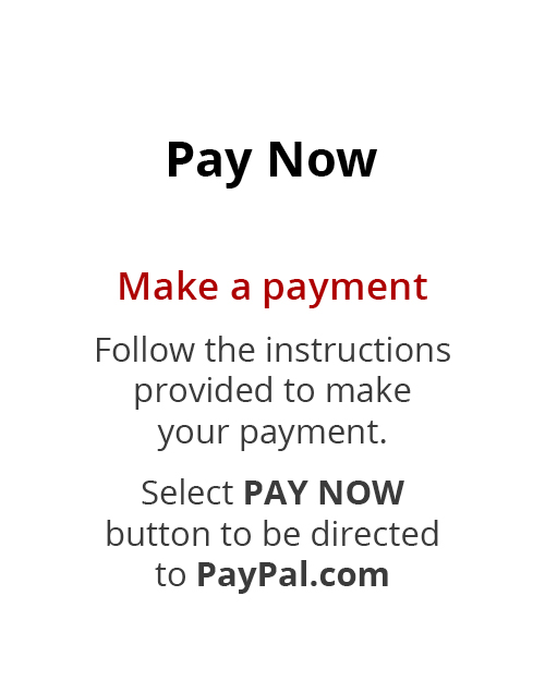 select Pay Now to pay with Paypal